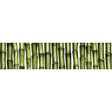 Джунгли  (С-JU1C021) 25х6 Бордюр