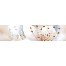 Сакура беж 25х6 (Golden Tile) Бордюр