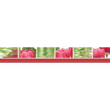 Фреш Тюльпаны 50х7 Бордюр