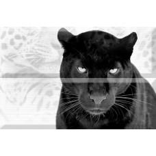 Кошки Puma (из 2 шт) 30х45 Панно