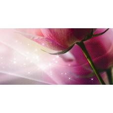 Арома (Ланком) розовый (619-2) 25х50 Декор