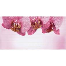 Орхидея розовый В (360-2) 50х25 Декор