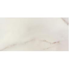 Carrara REKTYFIK (O-CRR-WTE301) - 290x593 мм Настенная плитка