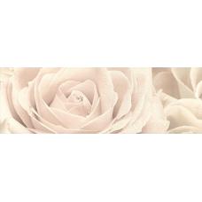 Розовый город Роза 25х75  Декор