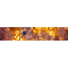 "Интерьерная панель АБС ""Просторы"" №25 Золотой закат (3000х600х1,5мм) глянец"