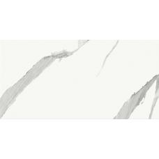 Vertus Calacatta WT9VET15 249*500 Настенная плитка